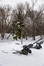 Field canons two at the edge of a forest Stock Images