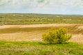 Field crops in spain landscape of fiel burgos Royalty Free Stock Photography