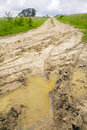 Field dirt road Stock Images