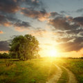 Field and dirt road to sunset Royalty Free Stock Photo