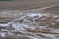 Field erosion Royalty Free Stock Photo