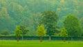 Field Grass Landscape. Autumn ...