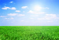 Field of grass and perfect sky green Stock Photography