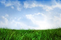 Field of grass under blue sky digitally generated Royalty Free Stock Photos