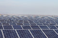 Field of Green Energy Photovoltaic Solar Panels Royalty Free Stock Photo