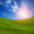 Field of green fresh grass sunset sun and under blue sky Royalty Free Stock Photos