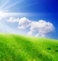 Z zelená tráva a modrý zakalený nebo