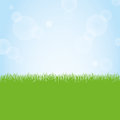 Field of green grass and blue sky background illustration