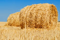Field with hay Royalty Free Stock Photo