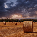 Field with haystacks the sloping wheat on sunset Stock Photos