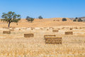 Field with haystacks in the valley everywhere Stock Images