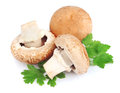 Field mushrooms with greens Royalty Free Stock Photo