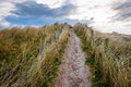 Field path surrounded high grass under blue sky ireland Royalty Free Stock Photography