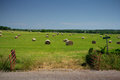 Field of round hay bales a on a clear spring day seen from the gate Royalty Free Stock Images