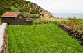 Field with stone house on terceira island green landscape a farm and azores Stock Photo