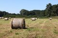 Field with straw bales Stock Photos
