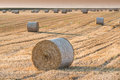 Field with straw bales in summer Royalty Free Stock Images