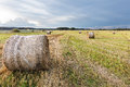 Field with straw rolls Royalty Free Stock Photo