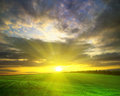 Field sunset over agricultural green Stock Photography