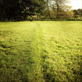 Field walking trail worn into grass Stock Images