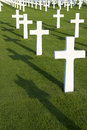 Field with white crosses Royalty Free Stock Photo