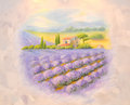 Fields of the blossoming lavender in Provence. A list on a room