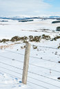 Fields covered by snow pastures in scotland s highlands Royalty Free Stock Images