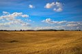 Fields And Meadows Of Scania, ...