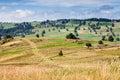 Fields and meadows surrounding Zakopane Royalty Free Stock Image