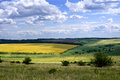 Fields and meadows in the voronezh region russia Royalty Free Stock Photo
