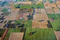 Fields of Po Valley - aerial view in evening light Royalty Free Stock Photo