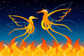 Fiery birds graphic illustration of Royalty Free Stock Photography