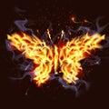 Fiery Butterfly Royalty Free Stock Image