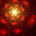 Fiery red fractal flower Royalty Free Stock Photo