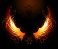 Fiery wings Royalty Free Stock Photo