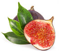 Fig figs close up isolated on white background Stock Photo