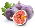 Fig sweet isolated on white background Stock Image