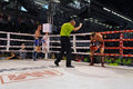 Fighter given referee s count competing match wmf muaythai world championships thai national stadium march bangkok thailand muay Royalty Free Stock Image