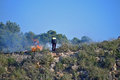 Fighting A Bush Fire With An Extinguisher
