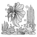 Fighting fish drawing for coloring book.