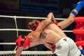 Fights without rules or MMA Royalty Free Stock Photo