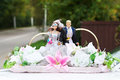 Figurines of the bride and groom Royalty Free Stock Photo
