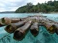 Fiji Bamboo Raft 4 Stock Photo
