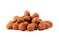 Filbert - hazelnut. Royalty Free Stock Photography