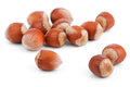 Filbert nuts  on white Royalty Free Stock Images