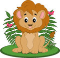 Filhote de leão masculino Imagens de Stock Royalty Free