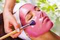 Fille avec le masque de massage facial de fruit Photos libres de droits