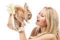 Fille avec un lapin Photo stock