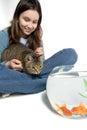 Fille retenant le chat affamé Images stock
