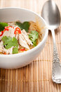Filled noodle soup with shredded chicken Royalty Free Stock Images